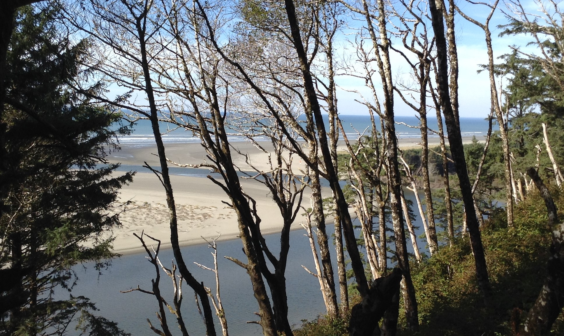 Peek a boo look at the Pacific Ocean in the Pacific Beach area of Washington's Coastline. #graysharborbeaches #beachscene