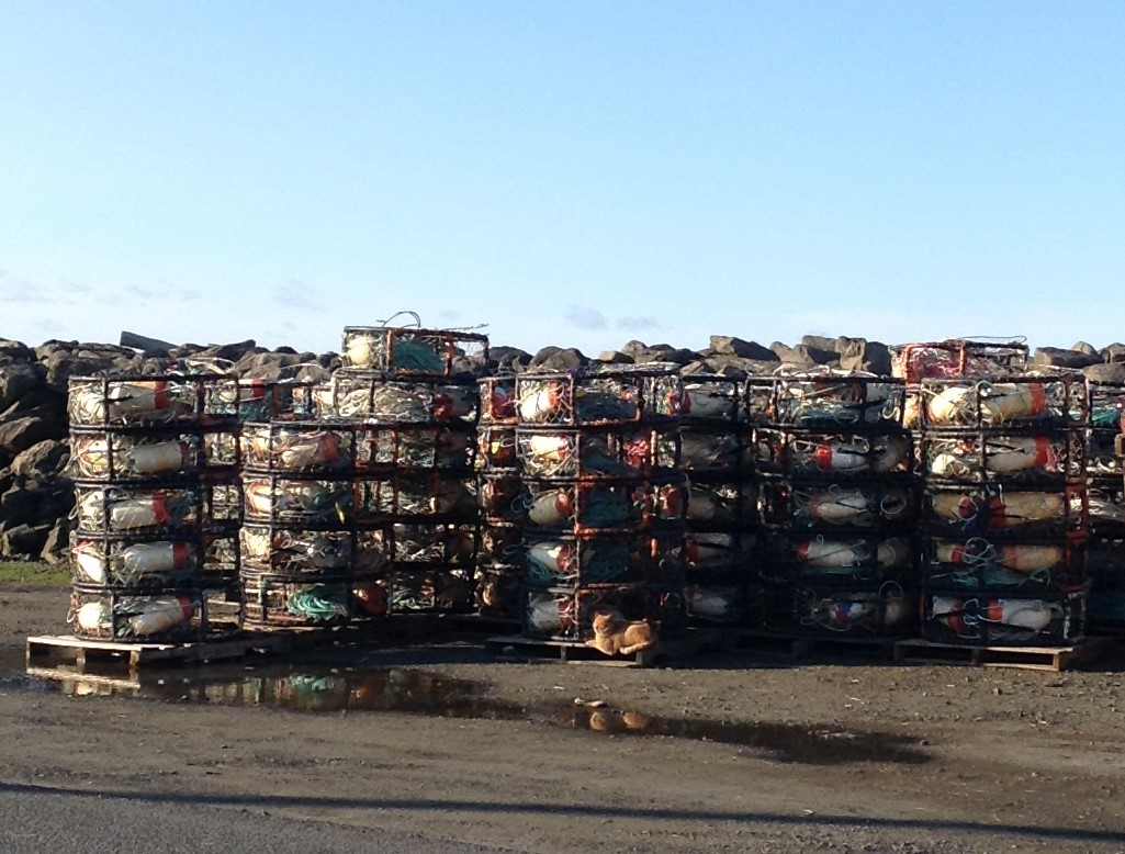 Stacked Crab Pots ready to go for the start of Dungeness Crab season #graysharborbeaches