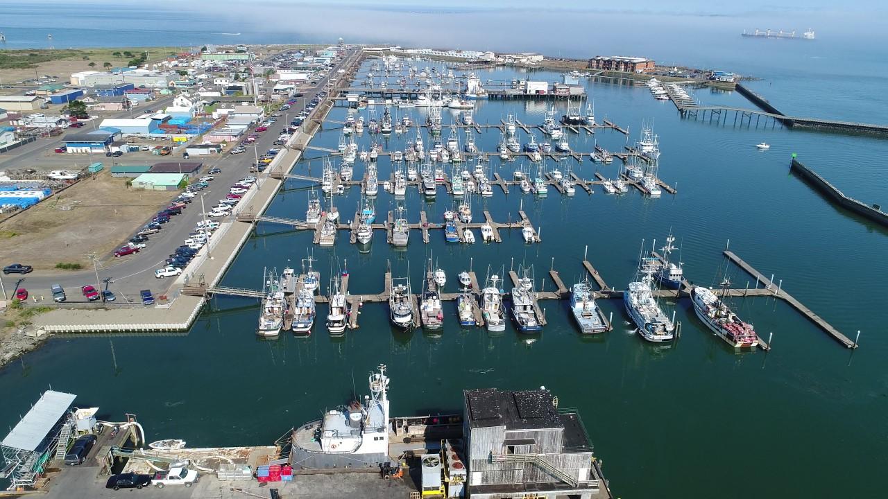 Westport, WA Marina aerial view