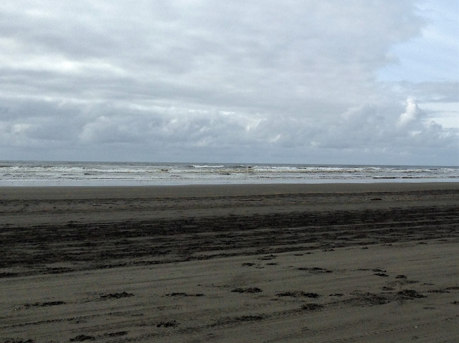 Beach Scene Waves Oceans Shores, WA #graysharborbeaches