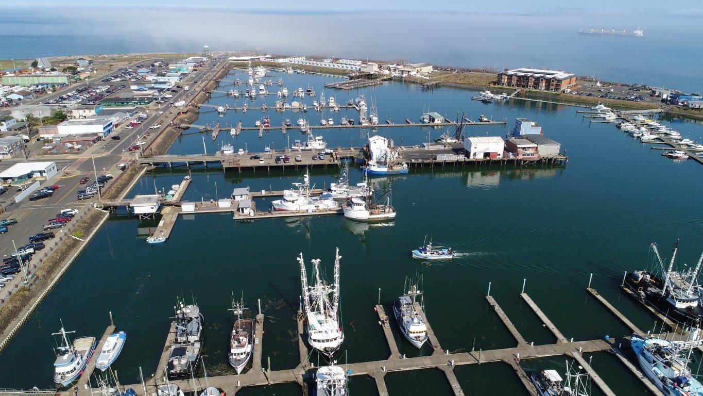 Westport WA Marina aerial view