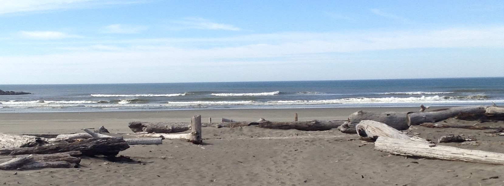 Dirftwood near jetty at Ocean Shores, WA #graysharborbeaches, #oceanshoreswa #springtime